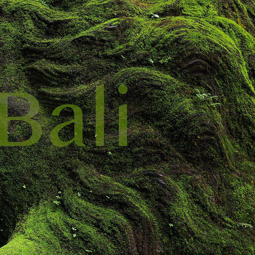 Arthur Los Fotografie - Bali