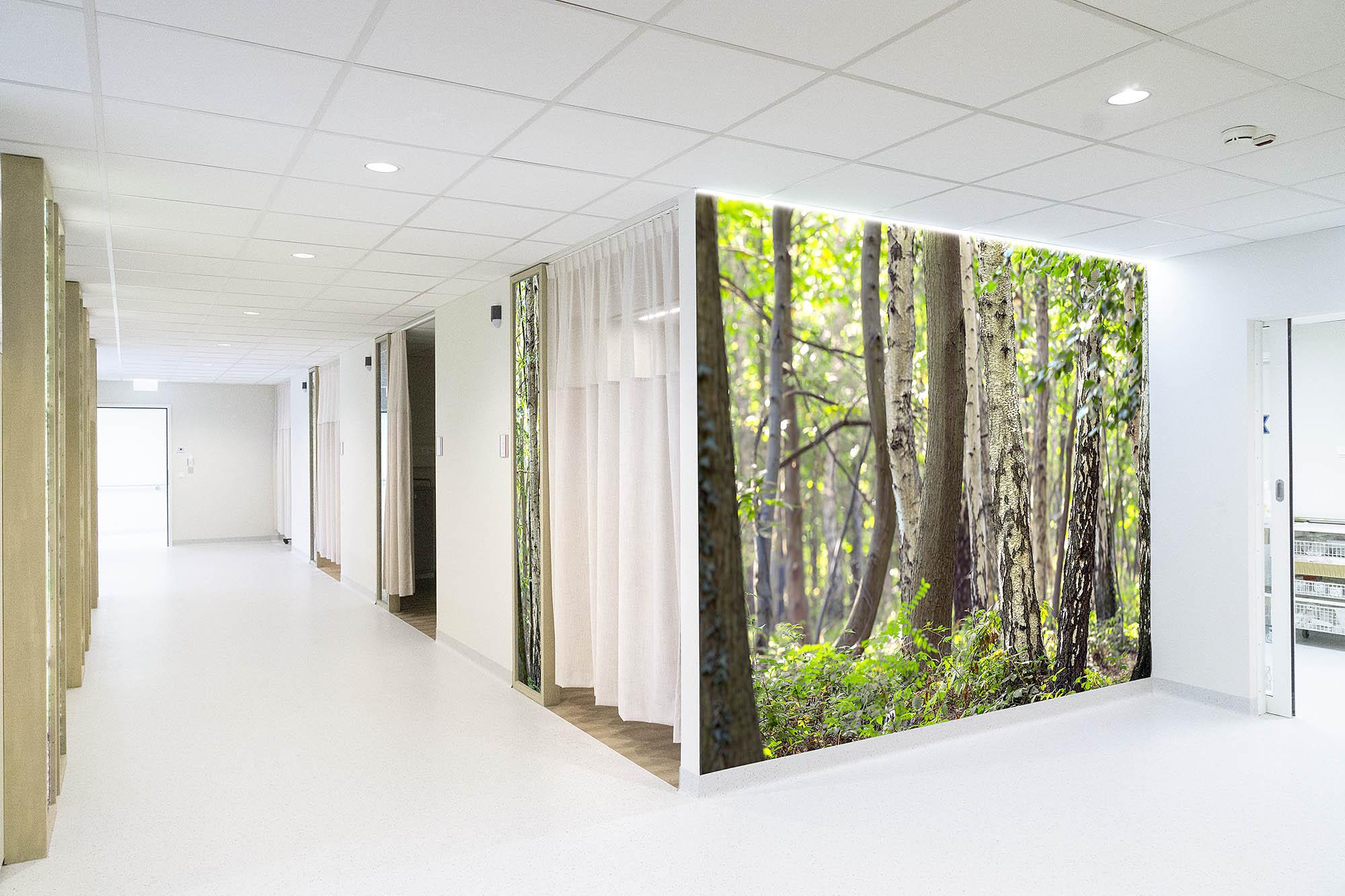 Arthur Los Fotografie-Healing Environment